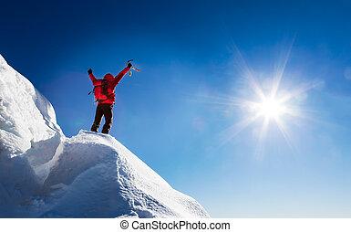 登山家, summit., 祝う, 征服