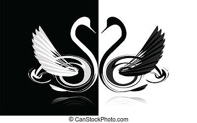 白い白鳥, 黒