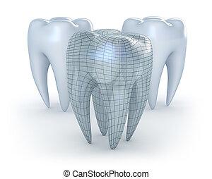 白い背景, 歯