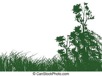 白, 草, 背景, 木