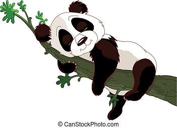 睡眠, パンダ, ブランチ