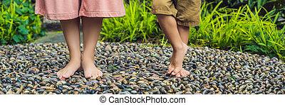 石, 歩くこと, フォーマット, 舗装, reflexology., 玉石, 長い間, 息子, reflexology, 舗装, textured, フィート, 小石, 旗, 母