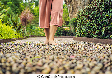 石, 歩くこと, 女, 舗装, reflexology., 玉石, reflexology, 舗装, textured, フィート, 小石