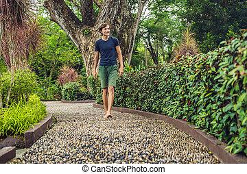 石, 歩くこと, 舗装, reflexology., 玉石, reflexology, 舗装, textured, フィート, 小石, 人