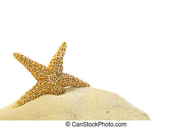 砂, ヒトデ, 丘, 単一