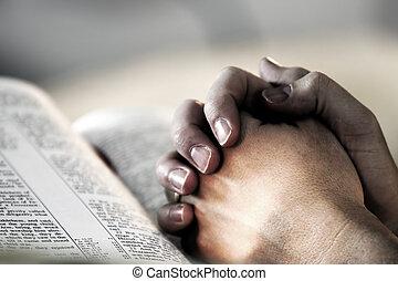 祈る 手, 聖書