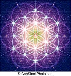 神聖, シンボル, 幾何学