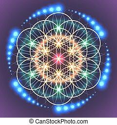 神聖, 生活, 幾何学, 花