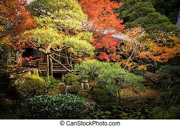 秋, スタイル, (koyo), 庭の日本人