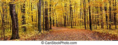 秋, パノラマ
