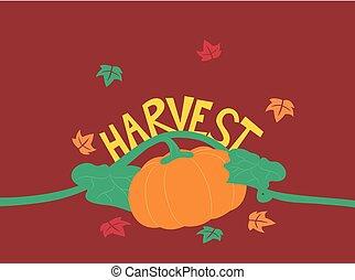 秋, レタリング, 収穫, イラスト, カボチャ