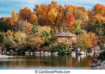 秋, 日本の庭, 打撃, frederik, meijer, 風景