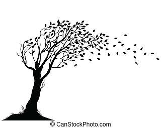 秋, 木, シルエット