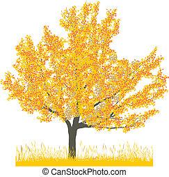 秋, 桜の木