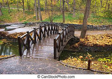 秋, 橋, 公園