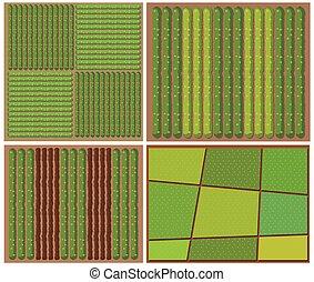 穀物, パターン, 平面図