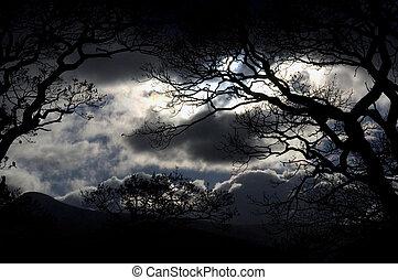 空, レーク地区, 夜