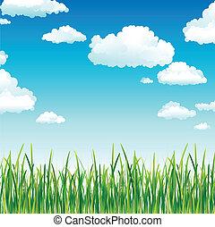 空, 草, 雲, 緑, の上