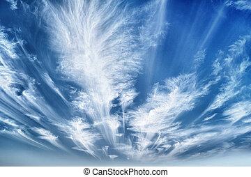 空, 雲, 日中, ストラタス