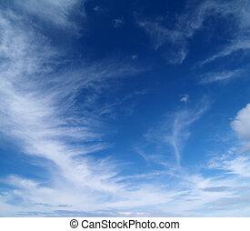 空, 雲, 毛状突起
