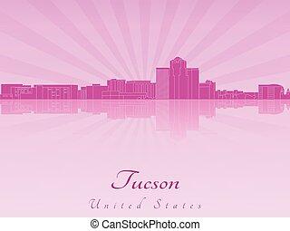 紫色, 放射, チューソン, スカイライン, 蘭