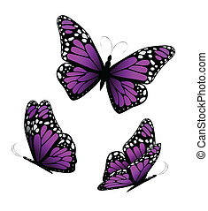紫色, tones., 蝶, ベクトル, 3