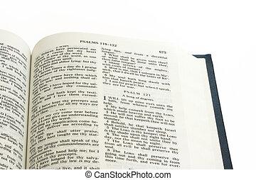 終わり, 聖書, ページアップ
