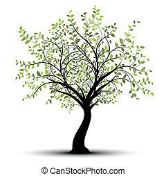 緑の白, ベクトル, 木, 背景