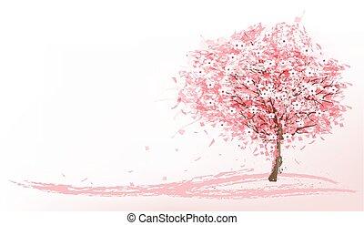 美しい, ピンク, vector., 木。, sakura, 背景, 咲く