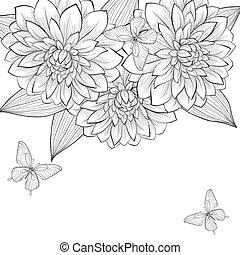美しい, フレーム, 蝶, 黒い背景, モノクローム, ダリア, 白い花