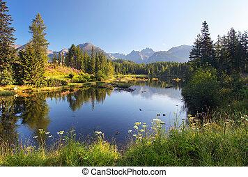 美しい, 山, 自然, pleso, -, 現場, 湖, スロバキア, tatra, strbske