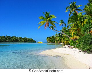 美しい, 島, aitutaki, 1フィート, クック諸島, 浜