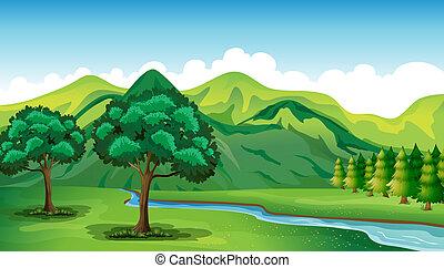 美しい, 川の景色