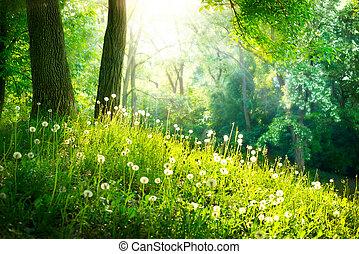 美しい, 景色。, 春, nature., 木, 緑の草