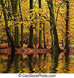 美しい, 秋, 季節, 秋, 反映された, n, 水彩絵具, 森林, 活気に満ちた, 風景
