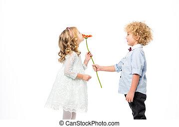 美しい, 花, 子供
