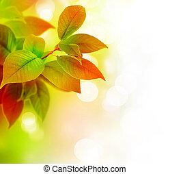美しい, 葉