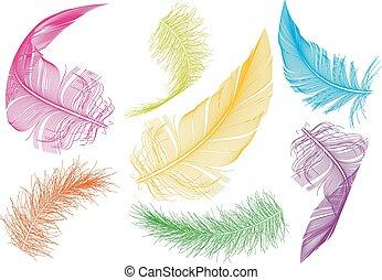 羽, ベクトル, セット, カラフルである