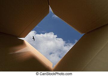考え, 箱, 外, 概念