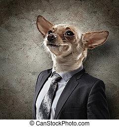 肖像画, 面白い, 犬, スーツ