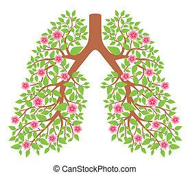肺, 健康