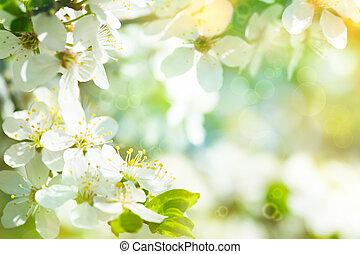 背景, 春, 咲く, 芸術, 驚かせること