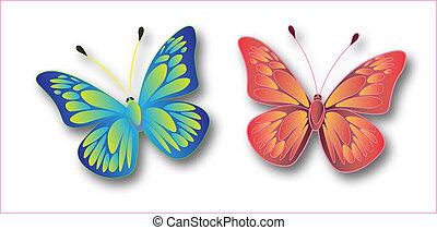 背景, 蝶色, フルである, 白, 隔離された