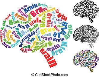 脳, テキスト