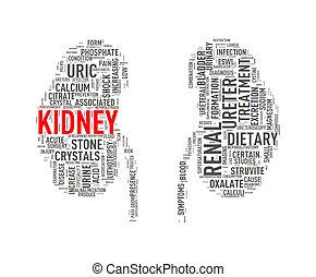 腎臓, wordcloud, 形, wordtag