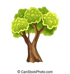 自然, 水彩画, 緑, leafage., 木。, 木, イラスト, 定型, 抽象的, foliage.