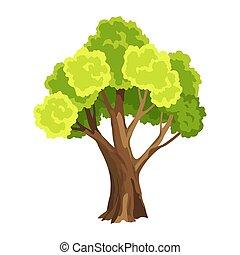 自然, 水彩画, foliage., leafage., 抽象的, イラスト, 定型, 木。, 緑の木