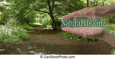 自然, 治癒, 道