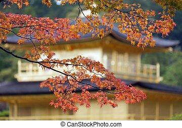 色, 日本語, 秋