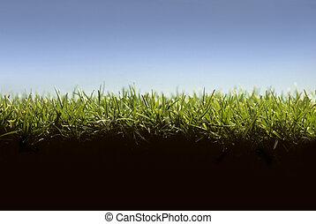 芝生, レベル, 提示, 交差点, 草, セクション, 地面